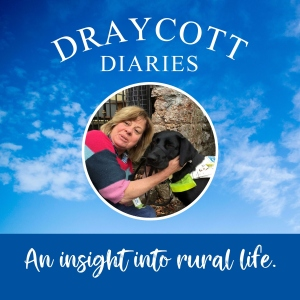 Draycott Diaries Village Podcast