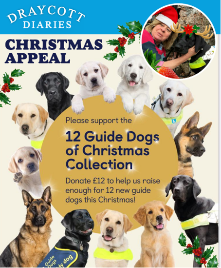Draycott Diaries Guide Dogs Xmas Appeal