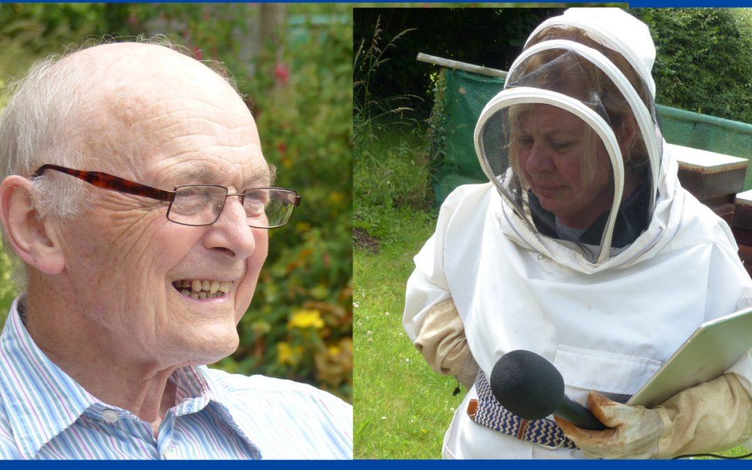 041 Draycott Bees